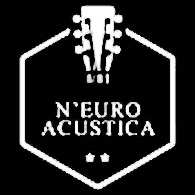 Aau Logo 3
